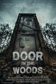 Door in the Woods