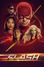 The Flash