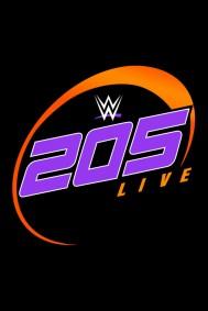 WWE 205 Live